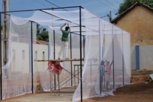 Building of cricket nets